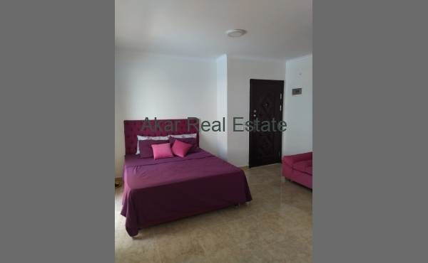 Very large studio with pool access